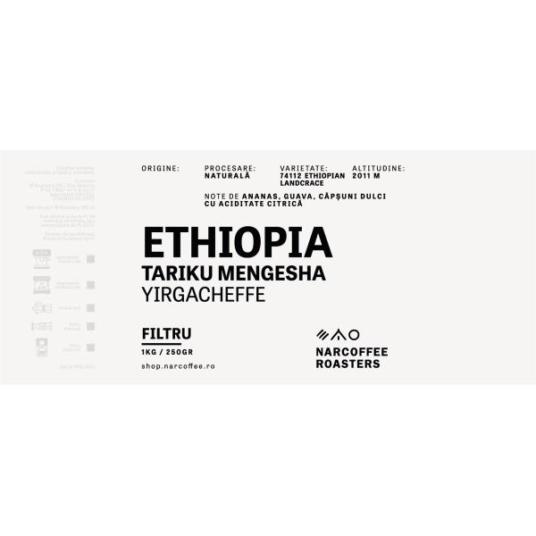Ethiopia Tariku Mengesha Filtru
